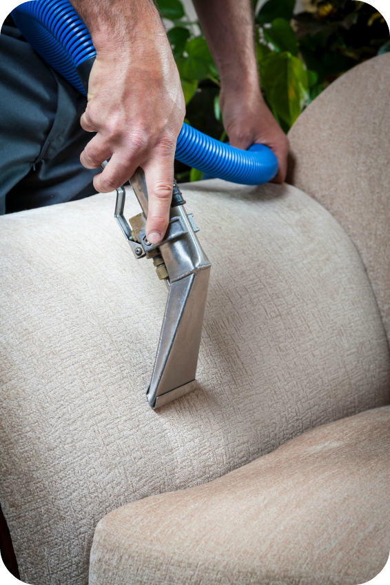 Commercial Upholstery Cleaning 7 Pillars Carpet Cleaning
